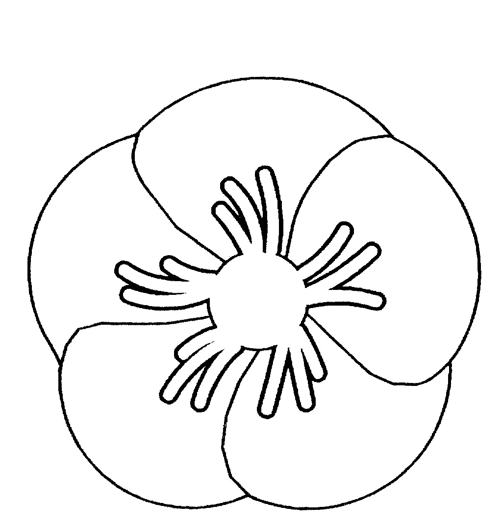 Poppy Flower Is Badge By Returned Amp Services League Of
