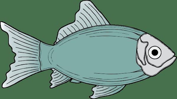 Generic Fish clip art - vector clip art online, royalty free ...
