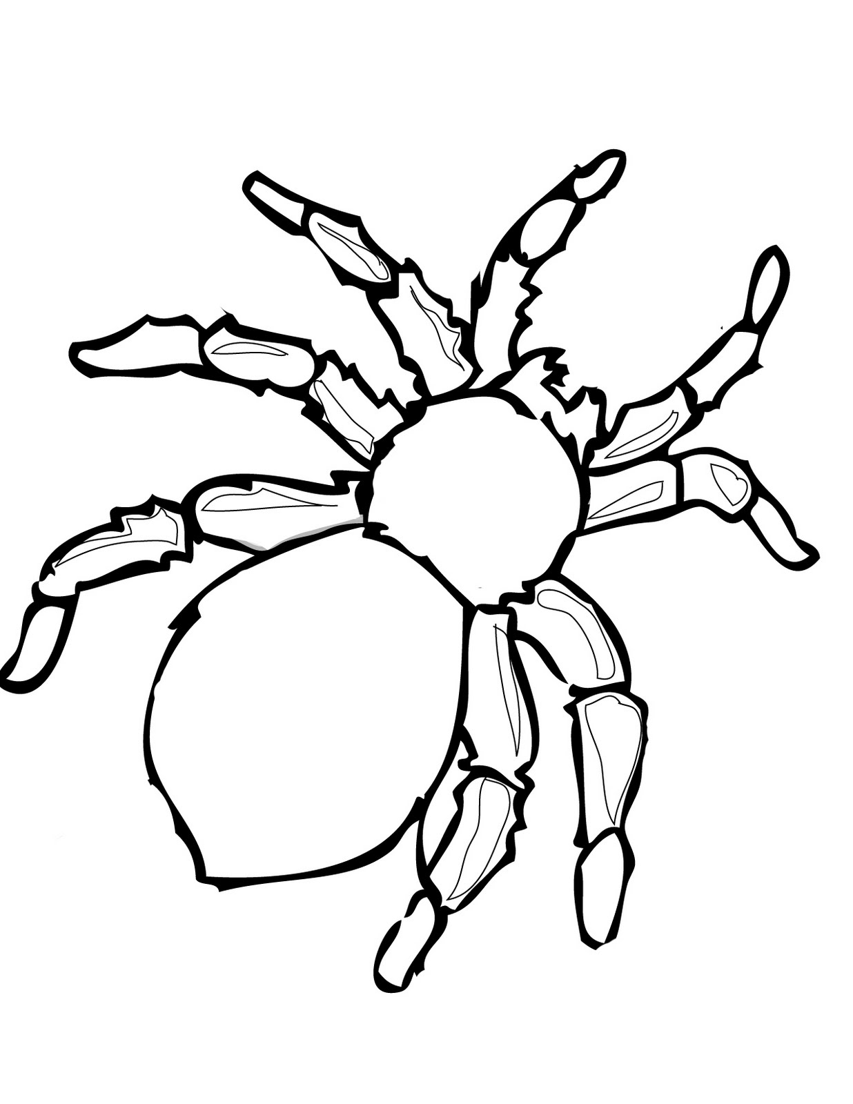 Spider Outline Printable