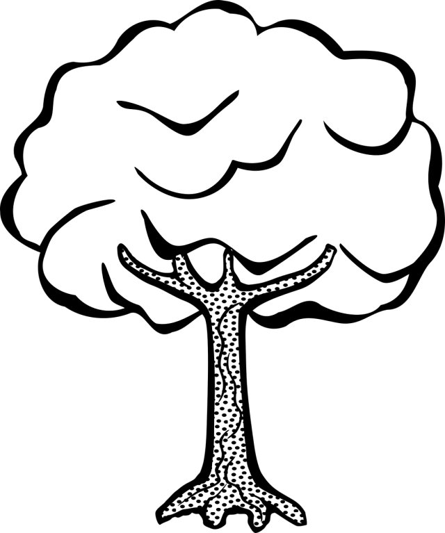 Free printable tree coloring pages for kids: 27 pics - HOW-TO-DRAW