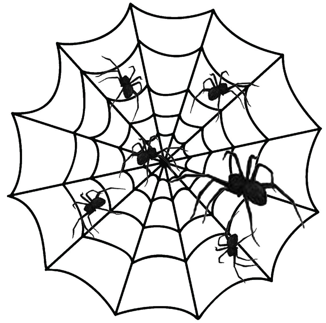Halloween Spiders Pictures