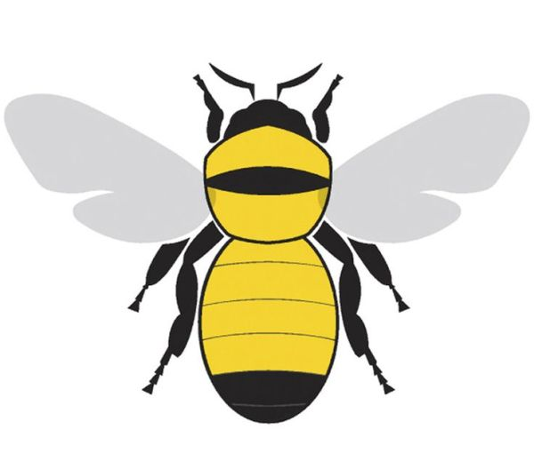 Honey Bee Illustration ClipArt Best