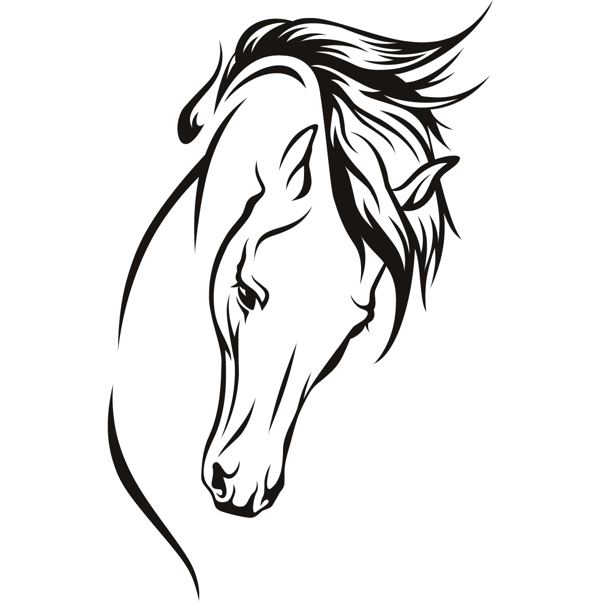 Picture Horse Head