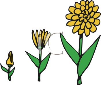 Image result for flowers grow clip art