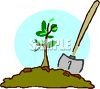 Newly Planted Sapling clipart