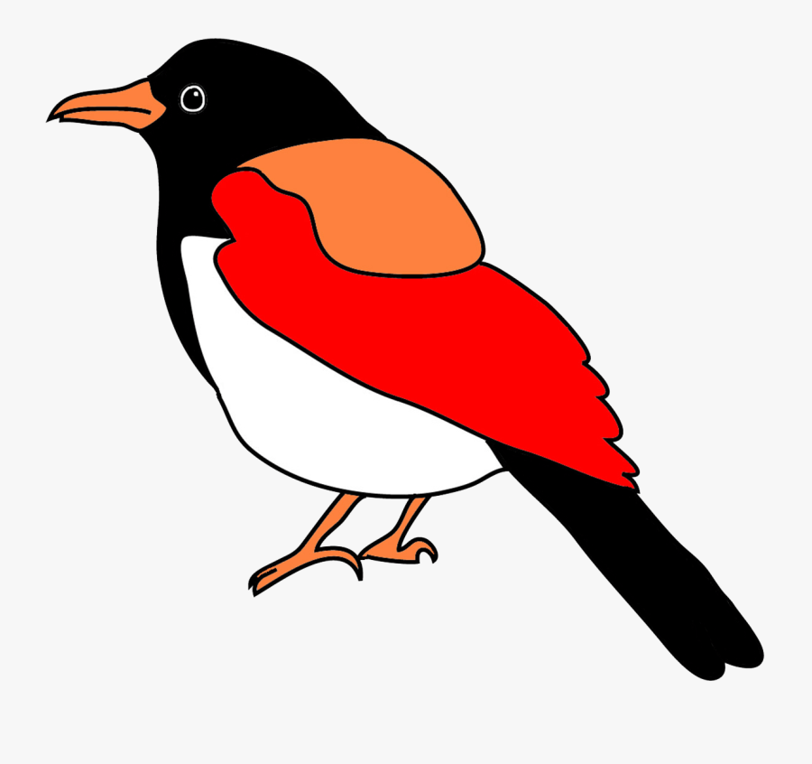 Blackbilled Magpie In Fantasy Colors Easy Bird Drawing Colored Free Transparent Clipart Clipartkey