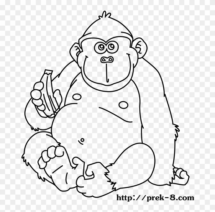 Jungle Animals Coloring Pages Wild Animals Coloring Jungle Animals Coloring Pages Free Transparent Png Clipart Images Download