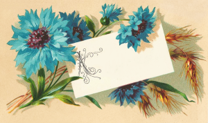 Blue Flowers and Wheat Clipart