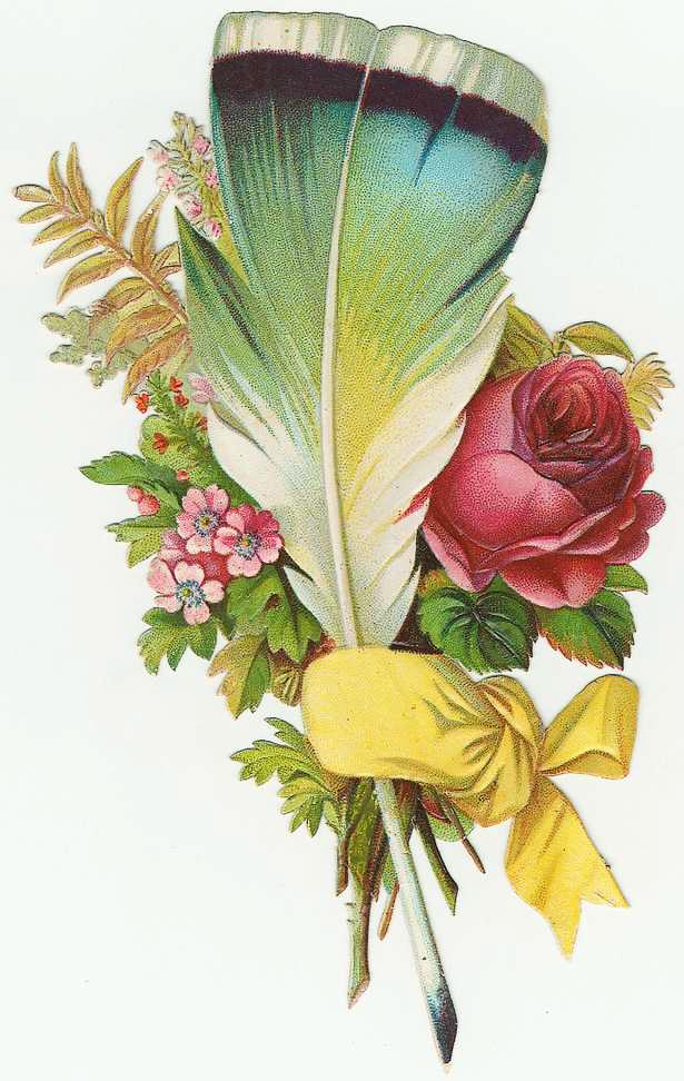 Feather Boquet Clipart