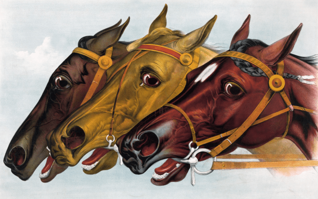 Three Horses Clipart