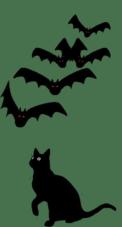 Drawings Spider Halloween