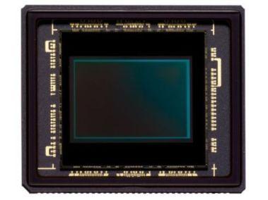 Nikon1_sensor