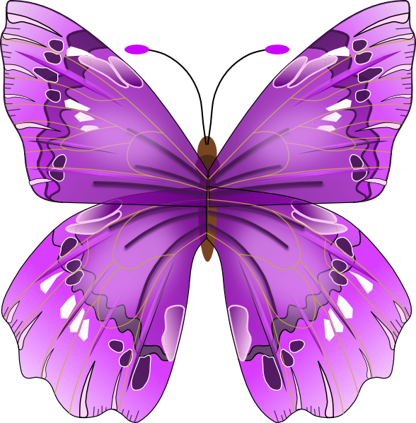 Image result for free clip art butterflies and flowers transparent