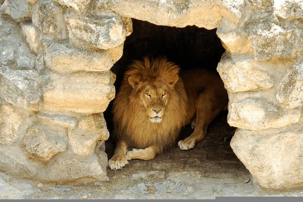 Den Lions Public Domain Daniel