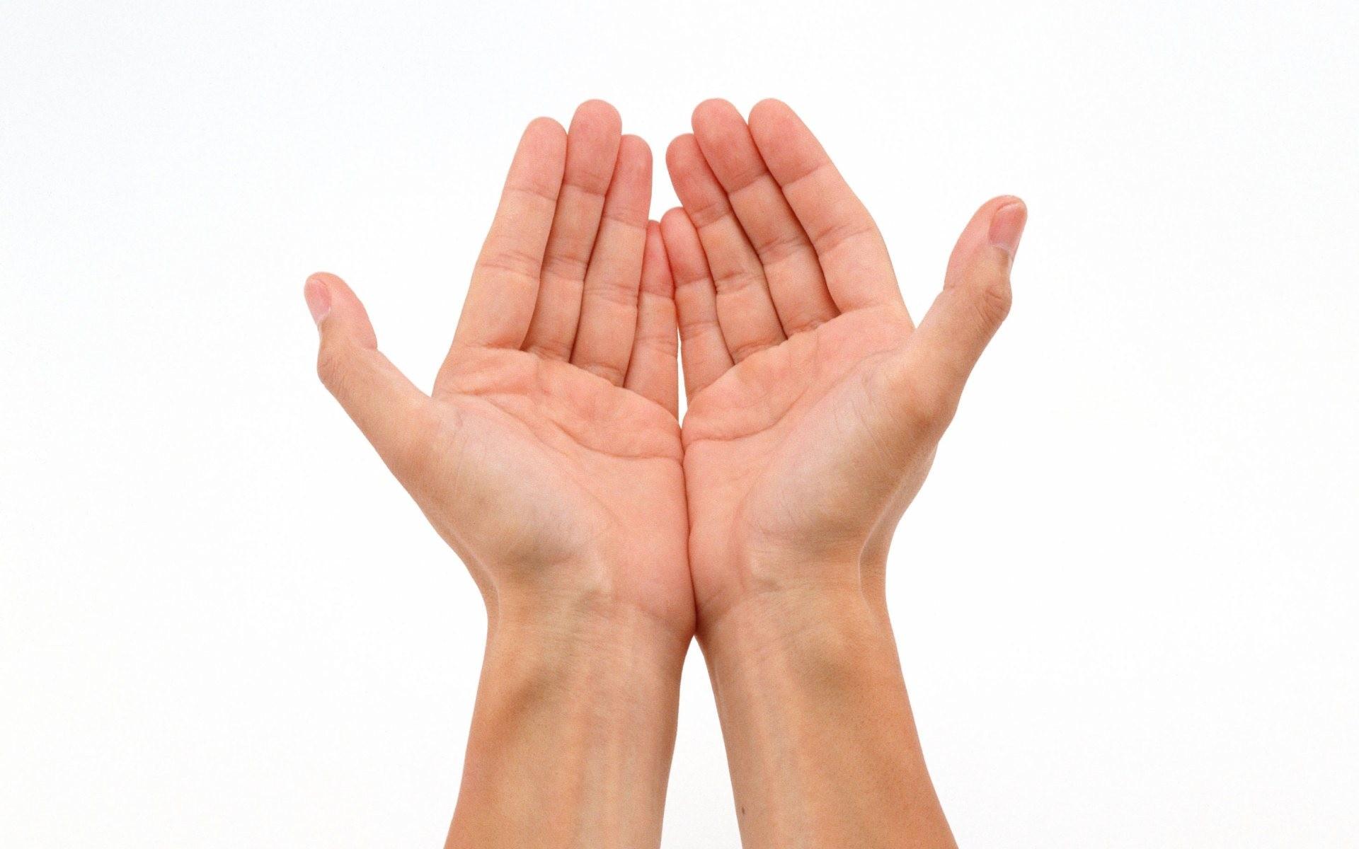 Resultado de imagen de hands