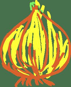 Onion Clip Art