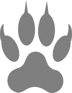 Image result for wolf paw print