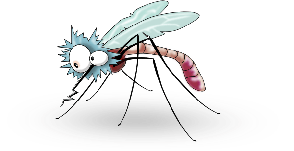 Mosquito Transparent Background