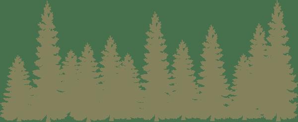 Light Green Forrest V2 Clip Art At Vector