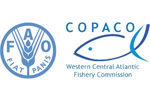 FAO-COPACO