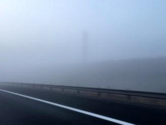 Cod Galben de ceață în județul Călărași FOTO Adrian Boioglu