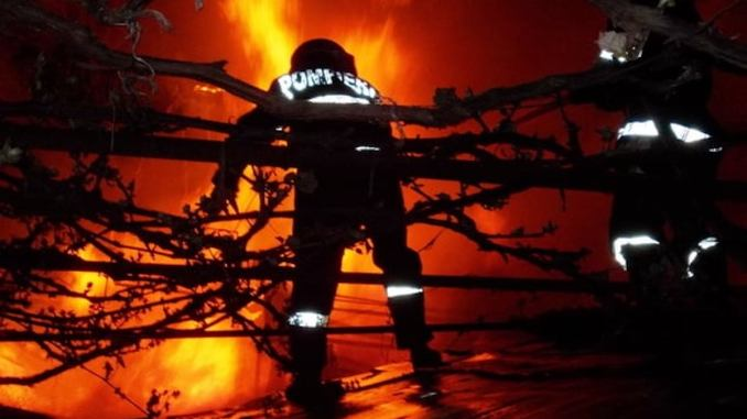 Pompierii călărășeni, în acțiune. FOTO ISU Călărași