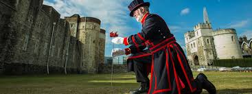 Yeoman Warder Crawford Bulter plants the First Poppy at the Towet