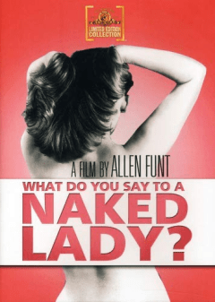 What Do You Say to a Naked Lady (1970)