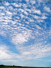 Cottonball clouds