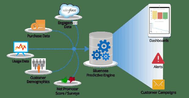 Bluenose Analytics Enables the Metrics-driven SaaS Business