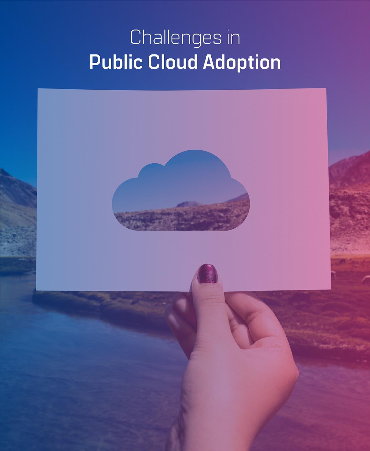 public cloud adoption