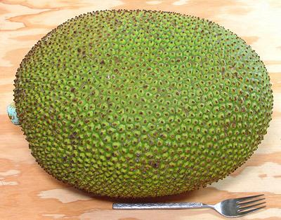 Whole Jackfruit