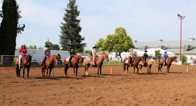 Madison Jones Crowned 2017 Rodeo Queen Clovis Roundup