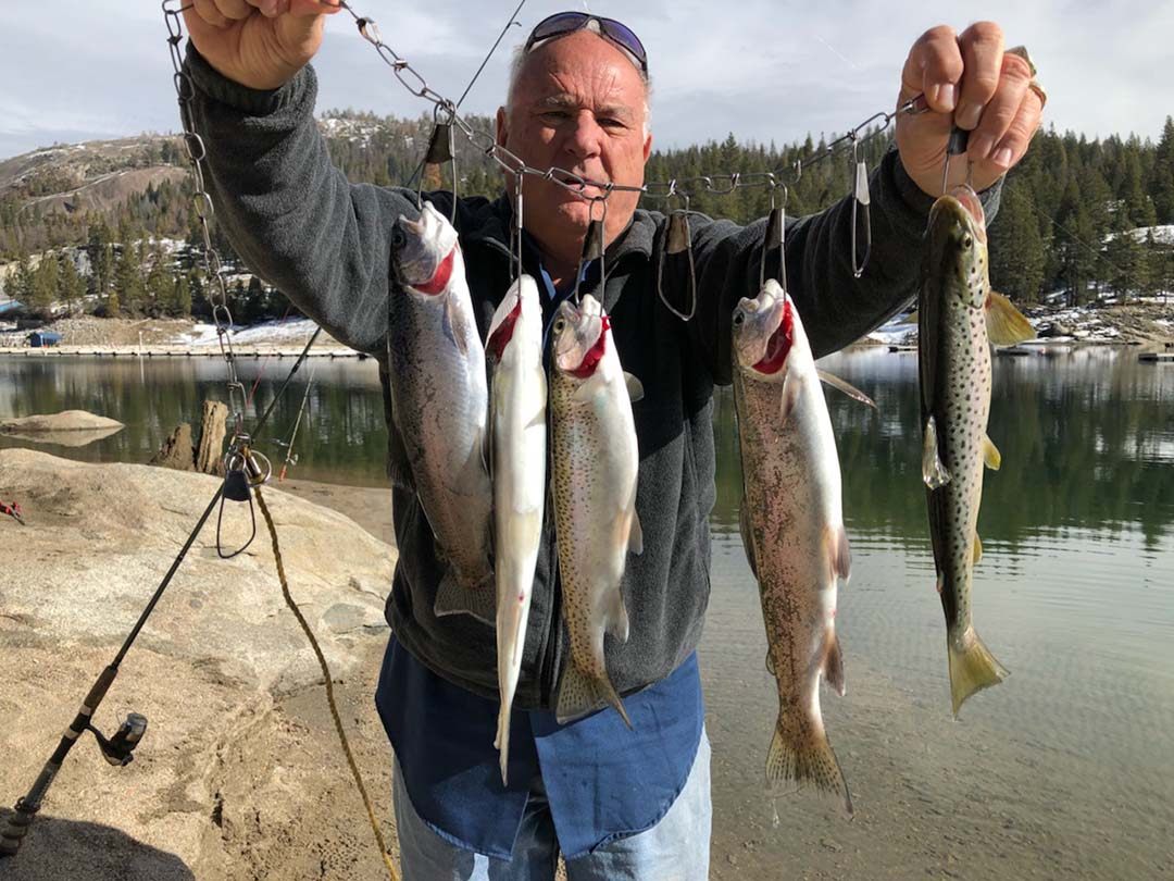 Shaver Lake Fishing Report: Fish planting for the Spring