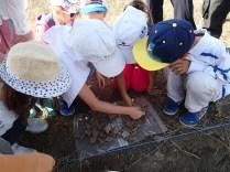 Potrivim cioburi de ceramica descoperite pe santier