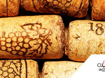 Rolhas de Vinho A História desde o Sobreiro a Garrafa