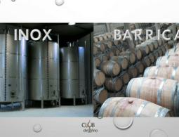 fermentação vinho tanque inox barrique