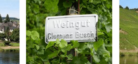Vino Biodinamico Riesling dalla Cantina Clemens Bush