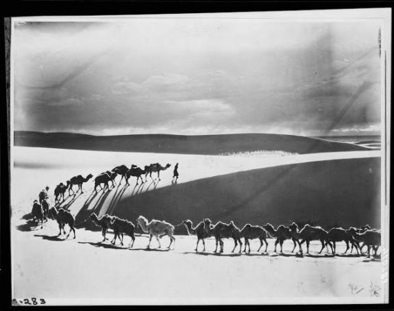 AMHN camel-caravan-across-the-desolate-dunes-of-tsagan-nor-in-search-of-water-mongolia-1925