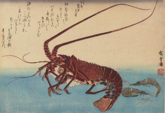 L comme… langouste, Iseebi to shibaebi , estampe, Utagawa, Hiroshige,1832.