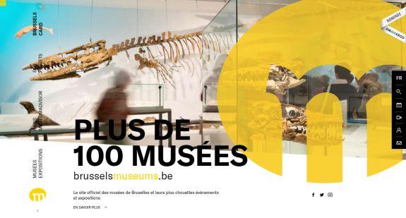 Capture d'écran homepage © Conseil bruxellois des Musées