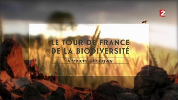 mnhn le-tour-de-france-de-la-biodiversite-episode-3