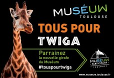 twiga-site-culture-time1
