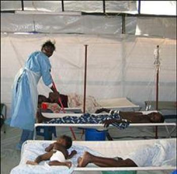 Biólogo angolano cria insecticida orgânico para acabar com a Malária, Febre amarela e Dengue