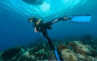 La plongée subaquatique et l'apnée