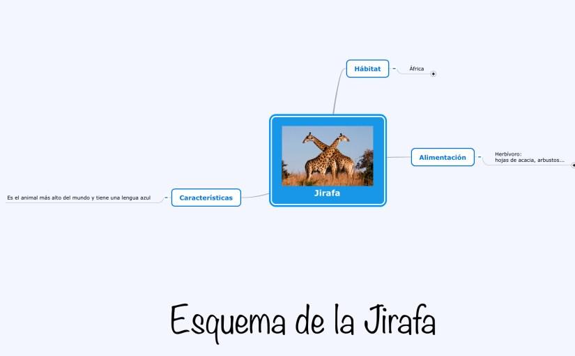Esquema de la Jirafa