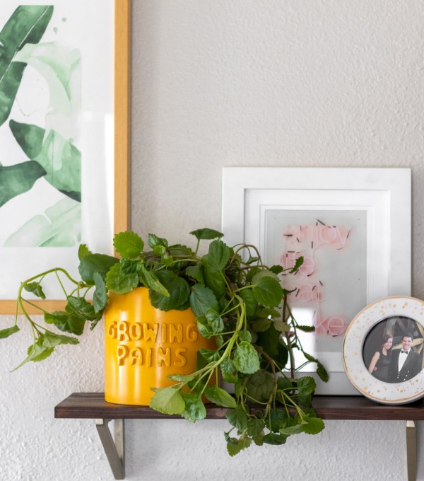 DIY 3D Graphic Planter Pots (Anthropologie Knock-Off)   Club Crafted