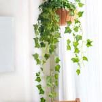 Diy Hanging Pumpkin Planter For Fall Decor Club Crafted