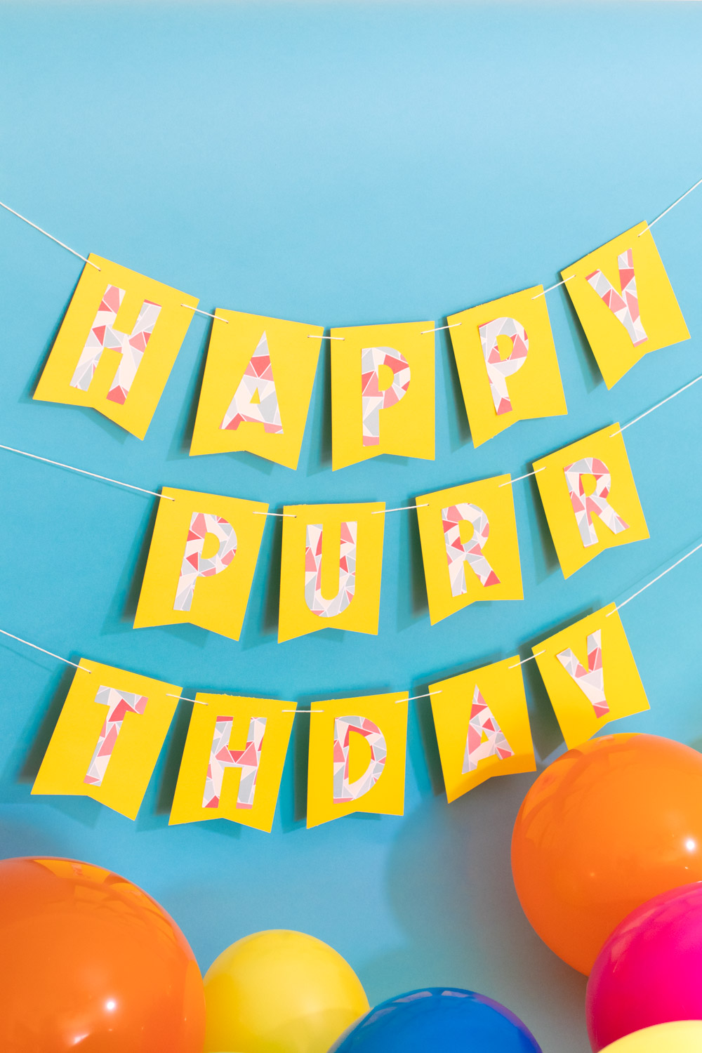punny birthday banner on blue background for cat birthday party