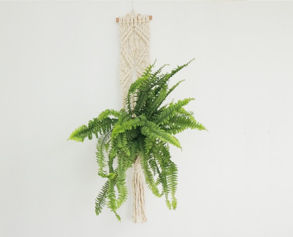 Plant Hanger- Colgante para plantas en macramé